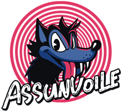 assunvoile.com